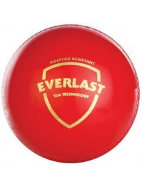 SG EVERLAST Cricket Synthetic Ball  (Pack of 1, Multicolor)